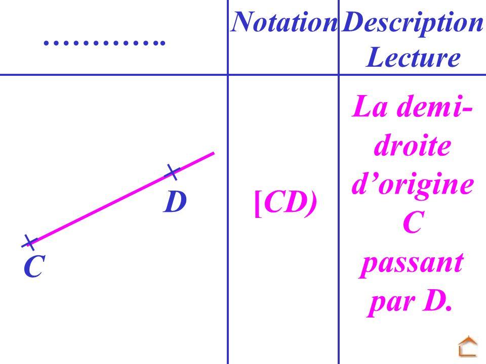 La demi-droite d'origine C passant par D. [CD)